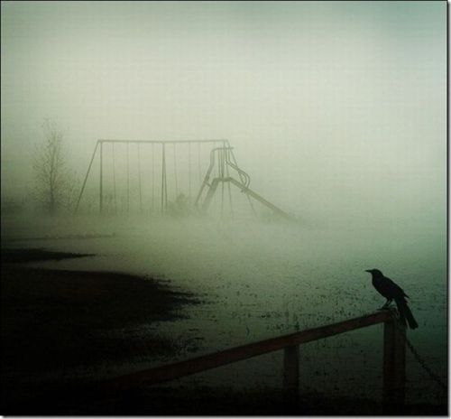 Swings in the Fog
