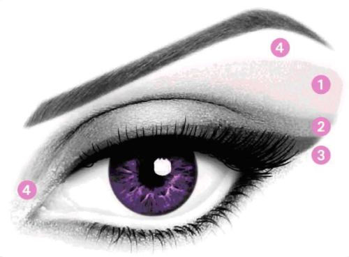 "drugstoreprincess:   ANATOMY OF THE EYE "" MAKEUP VERSION "" !! LIGHTEST SHADE - Apply the lightest shade as a base on the entire eyelid including the brow bone but avoid going all the way to the eyebrow for a more sophisticated look.   MEDIUM SHADE - Sweep the medium shade over the middle of the eyelid and blur it toward the outer edge of the eye to add depth. DARKEST SHADE - Apply the darkest shade along the base of the lashes with the beveled precision applicator to define and accentuate the eyes and intensify the eyes. HIGHLIGHTER / ILLUMINATOR SHADE - Apply the highlighter to the inner corner of the eye and below the eyebrow for a finishing touch. This helps to illuminate the eyes, making it look bigger and brighter.    —————————————————— Diagrams like this aren't necessarily the right thing to go by… there is no ONE specific eyeshadow look that is going to compliment EVERY eye shape. (Even though this is a pretty broad chart, and is okay for the most part..)   A style that looks great on a person with monolids is going to look completely different on someone with deep-set eyes, and so on. So instead of trying to follow things like this, or the diagrams that come with your eyeshadow palettes, go on YouTube and look through tutorials until you find someone with a similar eye shape to yours!!!  Then you'll really be able to see what flatters you."
