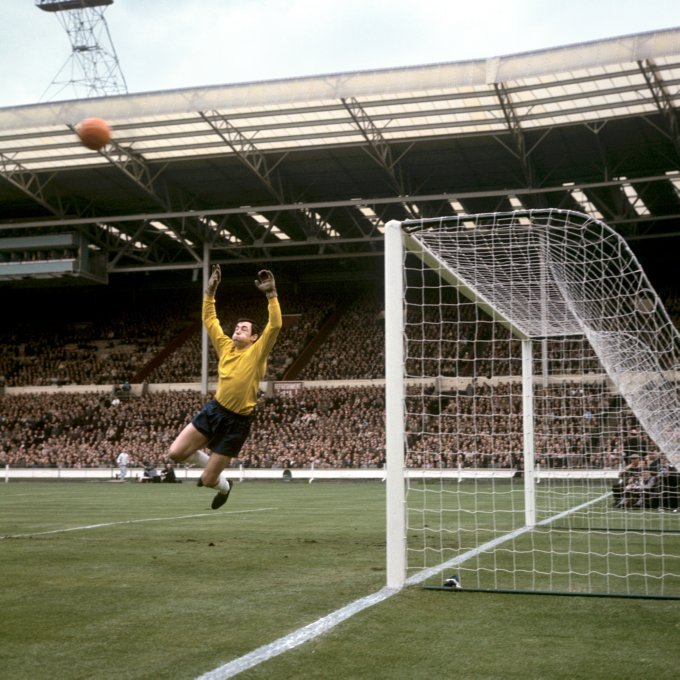 Gordon Banks at the 1966 World Cup.