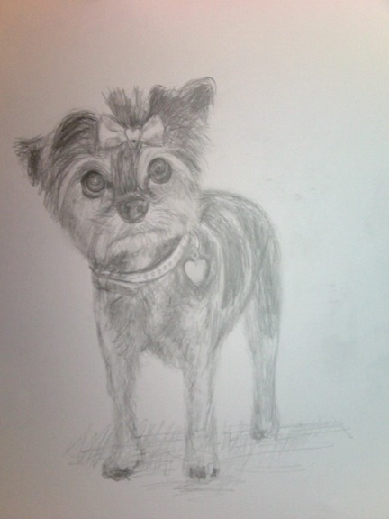 A super quick sketch of a cute little pooch.