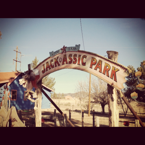 jack-assic park! alpine, tx