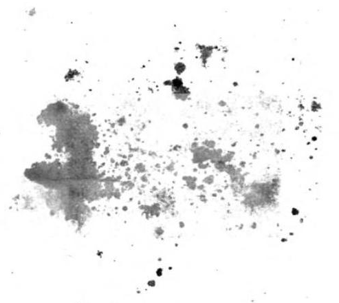 Ink spatter. From the back matter of Sermons on Several Occasions by John Wesley (1806).