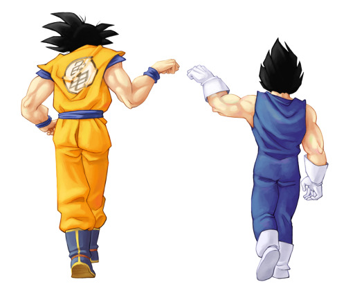 Bros for life. Until Vegeta beats Goku….which will never happen