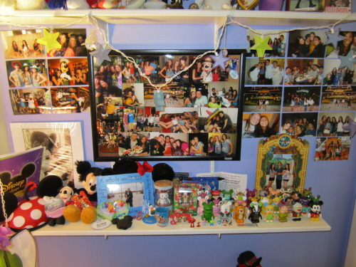 My DCP wall/shelf!