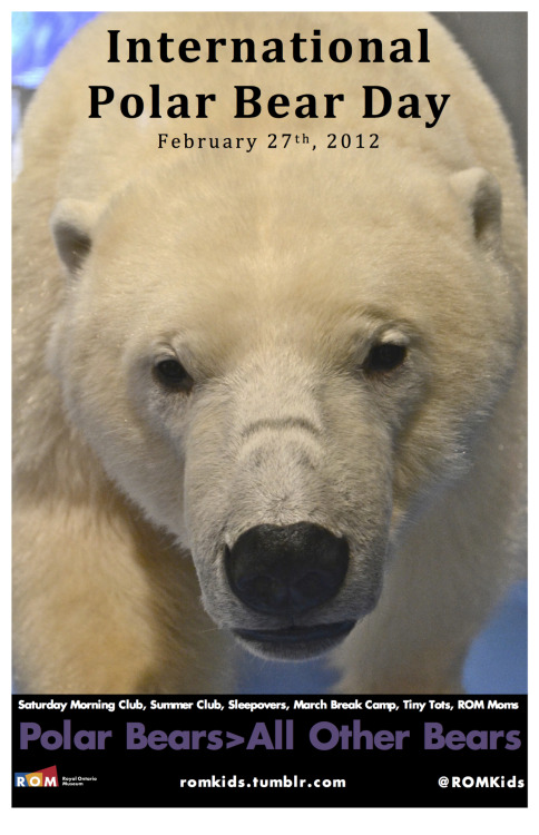 http://www.polarbearsinternational.org/news/international-polar-bear-day
