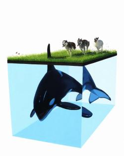 we-are-samizdat:  Josh Keyes IV