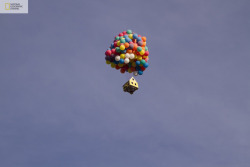 Real-Life 'Up' via »
