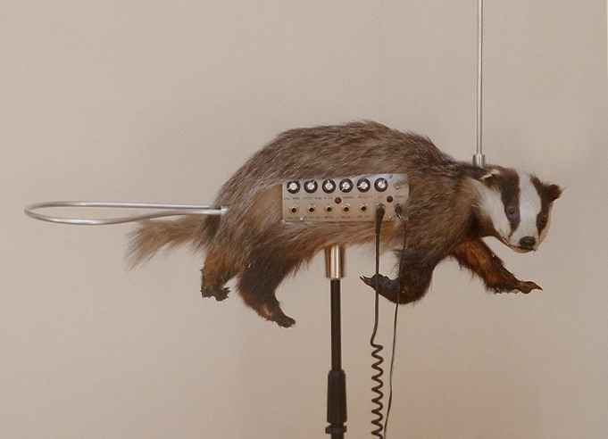 BADGER BADGER BADGER BADGER.  crappytaxidermy:  thanks to our friends over at mr-gif for submitting this one the badgermin