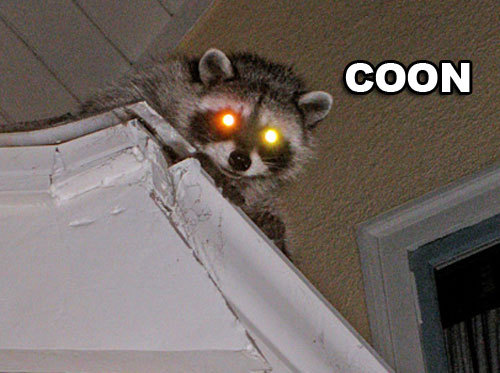 oprahslittlerbox:  Get it Coon, Instead of soon? No? ::okay::