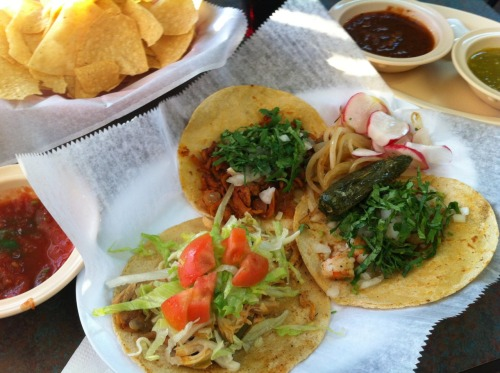 Pollo, pastor and camaron tacos from Los Comales in Memphis submitted by brian