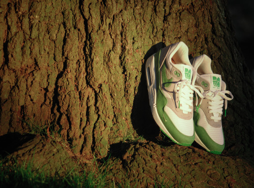 sneakerskip:  On a Tree: Patta AM1 by Arab Lincoln