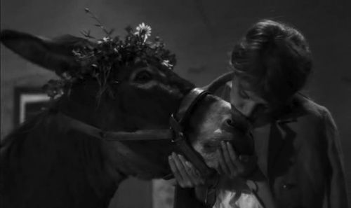 It's hard for me to feel sorry for Anne Wiazemsky in Au hasard balthazar (Bresson, 1966); she kind of turns out to be an ugly person (or at least a stupid one).  But poor Balthazar. :(