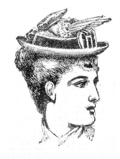 AUTUMN AND WINTER MILLINERY. March 1 1882