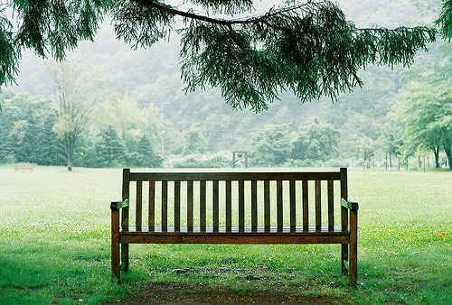 rendermebreathless:  a bench (by kaoru@224camera)