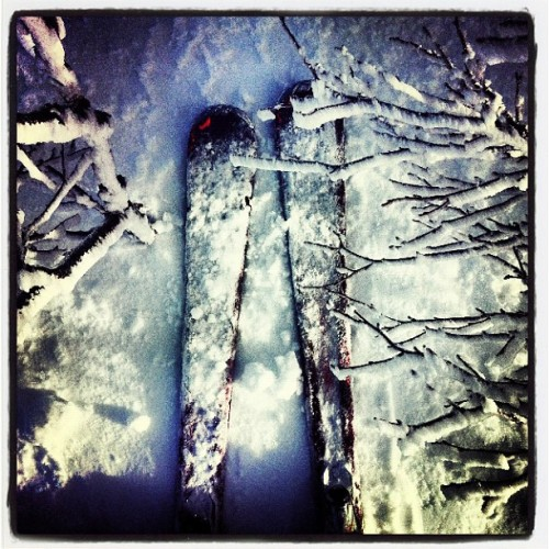 #skis #snow #winter #wonderland #sälen #lindvallen #skiing #sweden #tree #iphone4 #ig #photography #cool #effect #like #follow #paradise #tuesday #february  (Taken with instagram)