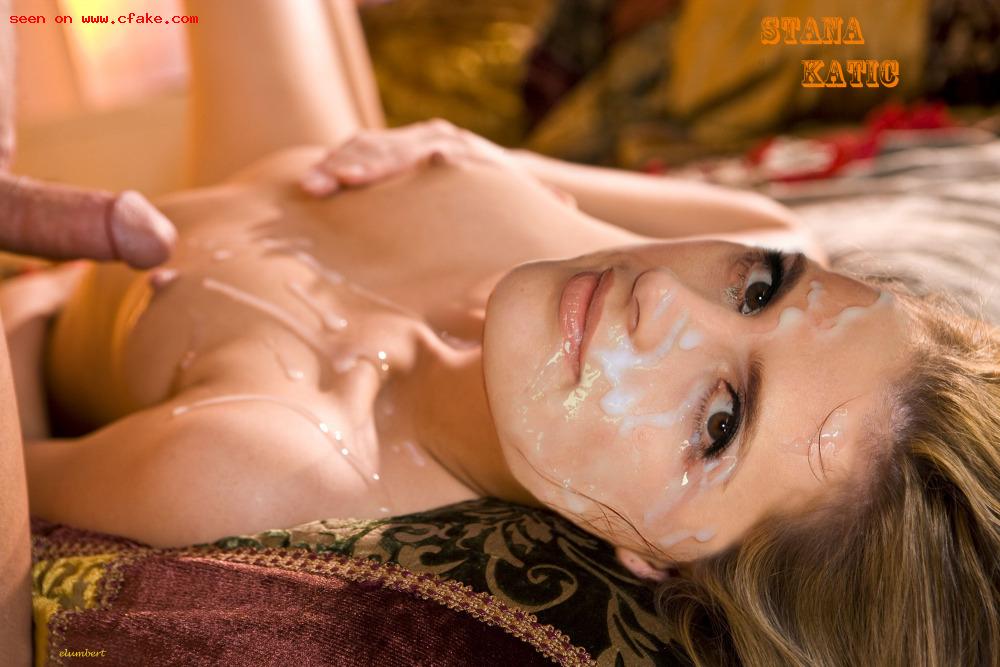 Stana Katic Nude Fakes