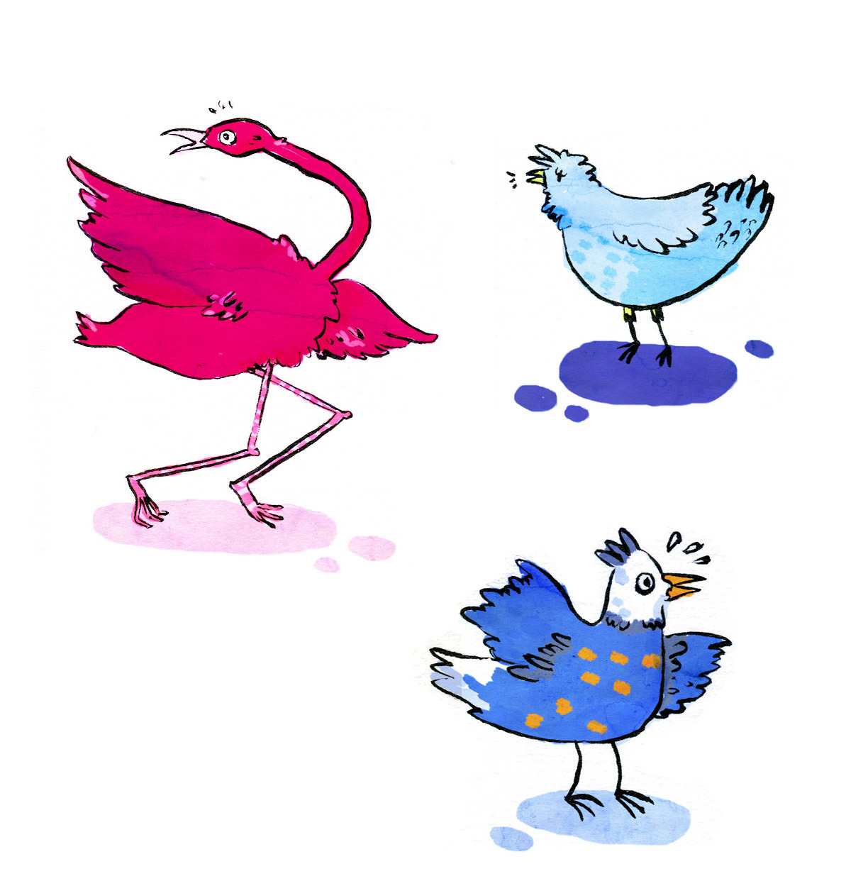 Crazy crazy birds for some publicity material I drew recently.