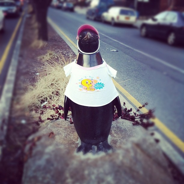 Penguin (I guess his tux was at the cleaners), 75th Street. queenslove:  This fellow just got a new outfit for spring. You can find him at 75th Street and 37th Road in Jackson Heights.