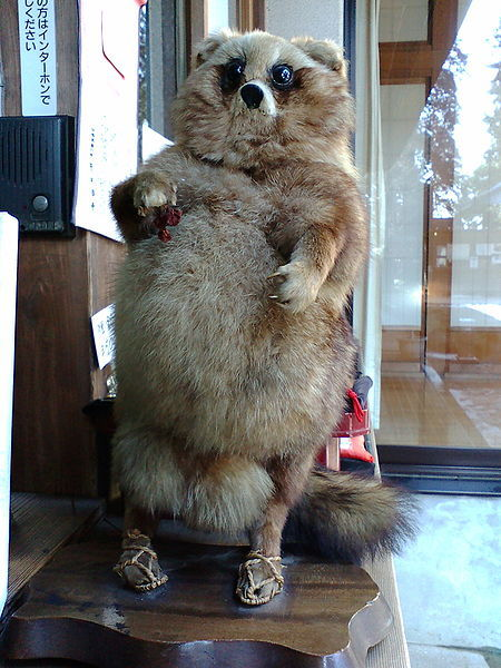Georgie, this is a stuffed tanuki. STUFFED. That means those are real.  …Perhaps Pom Poko wasn't exaggerating so much after all… o_O
