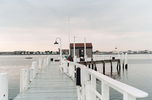 theyoung-thefoolish:  newport (by appleisapple)