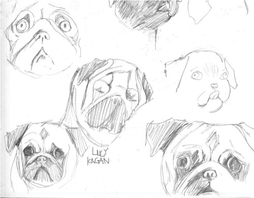 Just drawing pugs. Guys, I'm totally going to make this into a repeat pattern. Every lolita will be wearing my print this season.