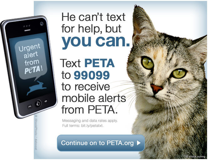 Brand: PETA Location: Website screen capture Source: peta.org, February 15 2012 What we liked: Love this CTA - it's clear, relevant, powerful. What we didn't: Not a single thing I would change. It's particularly cool in that it pops up before you can even log on to the site.