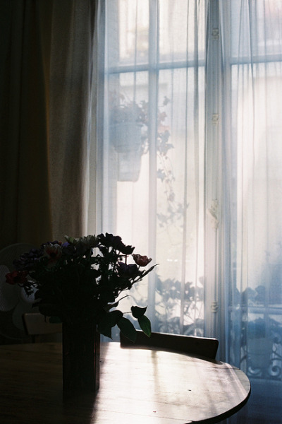 praetendere:  untitled by isabelle bertolini on Flickr.