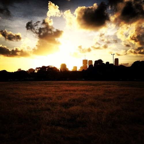 #sunset over Brisbane #city  (Taken with Instagram at New Farm Park)