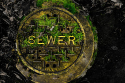 ahardyperspective:  sewer
