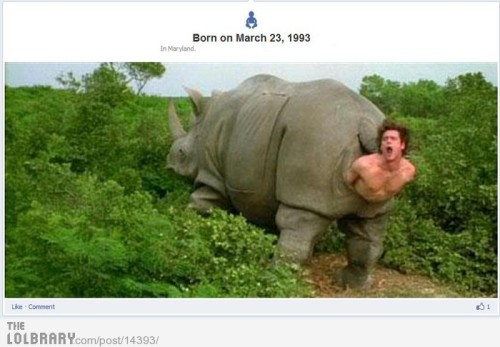 dailyfunpictures:  Awesome Timeline Born Picture Follow this blog for the best new funny pictures every day