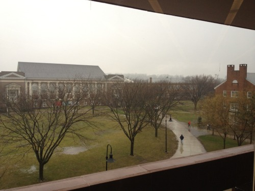 View of campus from the library window.