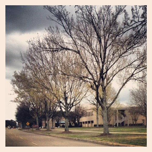 Gunter AFB, 🇺🇸 can't wait until the trees bloom again. #instagood #ig #instagramhub #instagram #montgomery #cool #iphone4s #iphone  (Taken with instagram)