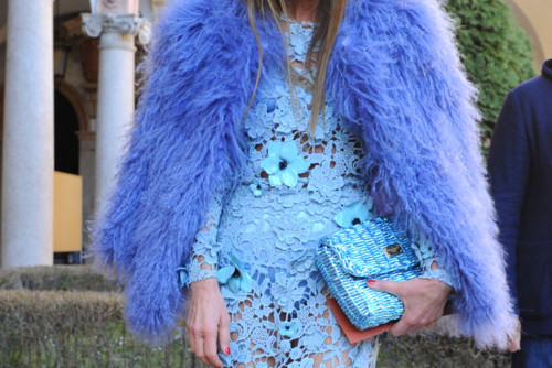 Blue Lace and Fur…..Fabulous!