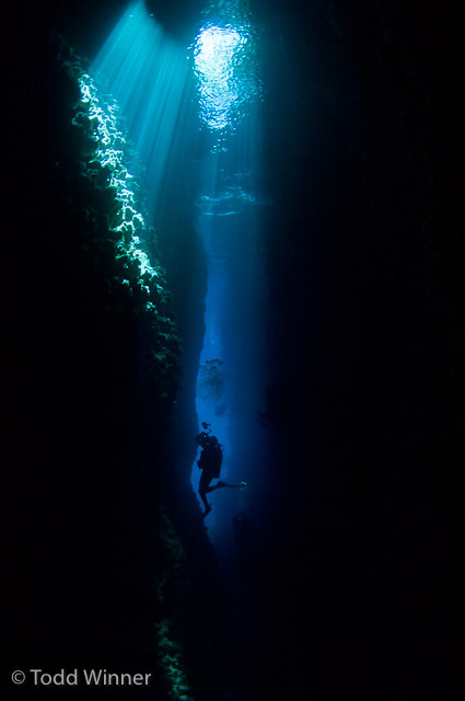 Diver in the Solomon Islands By Todd Winner Brought to you by Underwater Photography Guide, the best online resource for divers and underwater photographers.