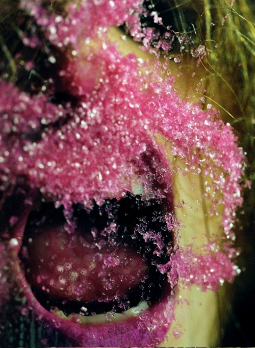 Pink Snow,  Marilyn Minter, 2009