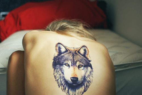 I want a tattoo of a wolf for no other reason than them looking cool.