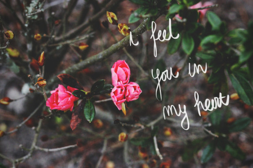 cristina-suarez:  i feel you i my heart and i don't even know you photo: Cristina Suarez