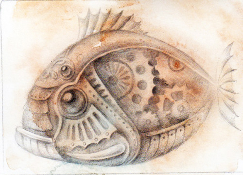 "Fish study 2,5""x 3.5"" by Julianna Menna"
