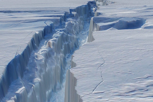 dendroica:  Flying Through a Crack in the Ice by NASA Goddard Photo and Video on Flickr. NASA image acquired October 26, 2011In October 2011, researchers flying in NASA's Operation IceBridge campaign made the first-ever detailed, airborne measurements of a major iceberg calving event while it was in progress. Four months later, the IceBridge team has mapped the crack in Antarctica's Pine Island Glacier in a way that allows glaciologists and the rest of us to fly through the icy canyon.The above image is a still frame captured from a three-dimensional, virtual flight through the new rift in the Pine Island Glacier. (A high-definition version of the movie can be seen here www.flickr.com/photos/gsfc/6941158533 ) The animation was created by draping aerial photographs from the Digital Mapping System—a still camera with very precise geolocation ability—over data from the Airborne Topographic Mapper—a scanning laser altimeter that measures changes in the surface elevation of the ice. Both instruments were flown on NASA's DC-8 research airplane, and the data was collected on October 26, 2011.The crack formed in the ice shelf that extends from one of West Antarctica's fastest-moving glaciers. The path of the crack in this animation stretches roughly 18 miles (30 kilometers) in length (the actual crack is much longer), with an average width of 240 feet (about 80 meters); it was 820 feet (250 meters) at its widest. The canyon ranged from 165 to 190 feet deep (50 to 60 meters), with the floor being roughly at the water line of the Amundsen Sea. Radar measurements suggested the ice shelf is about 1,640 feet (500 meters) feet thick, with only 165 to 190 feet of that floating above water and the rest submerged.Scientists have been waiting for the crack to propagate through the rest of the ice shelf and release an iceberg, which they estimate could span 300 to 350 square miles (up to 900 square kilometers). If it does not split off soon, however, the sea ice that forms with the onset of southern winter might keep the ice chunk trapped against the coast for a while.Pine Island Glacier last calved significant icebergs in 2007 and 2001, and some scientists speculated that it was primed to calve again. But until the IceBridge flight on October 14, 2011, no one had seen any evidence of the ice shelf beginning to break apart. Since then, a more detailed look back at satellite imagery seems to show the first signs of the crack in early October.Animation by the NASA IceBridge team. Caption by Mike Carlowicz, with reporting from Patrick Lynch and Jefferson Beck.Instrument: Aircraft SensorsCredit: NASA Earth Observatory