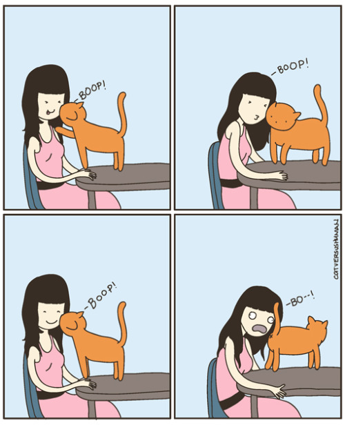 lol problems of a cat lady.