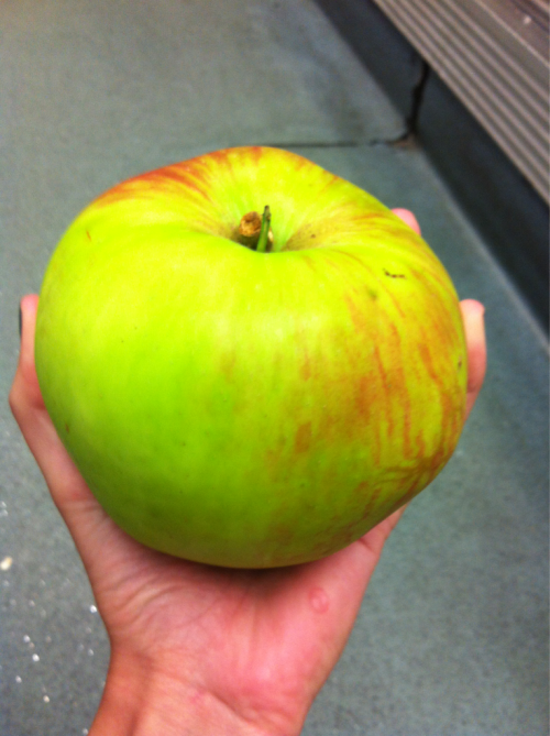Massive apple of doom!