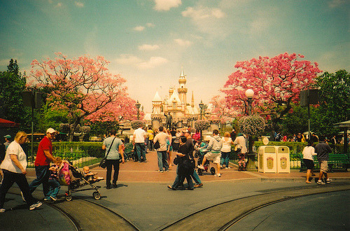Love the springtime blossoms at Disneyland! mickeyandminnie:  (by Jessie Koon)