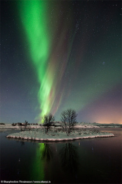 Aurora Borealis at Þingvellir National Park, Iceland by skarpi - www.skarpi.is on Flickr.