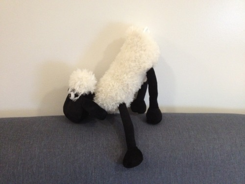 A lamb. Because.. lambs are cool (Devon Moore '14).