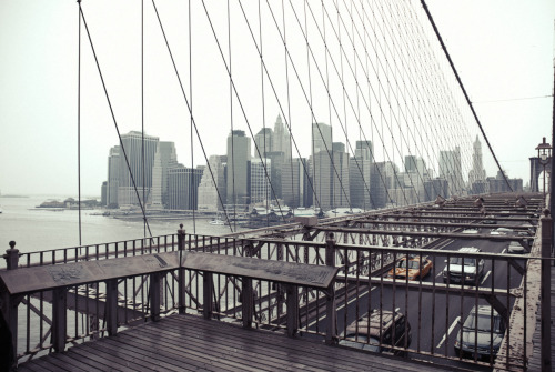 © http://www.salvodipino.it - All rights reserved. New York - Bridge 02