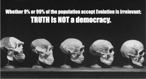 religiousragings:  Truth is not a democracy!