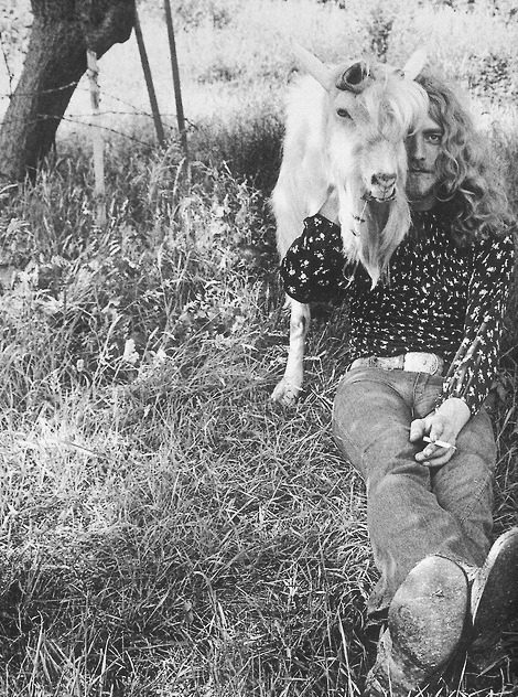 Robert Plant with an animal friend.