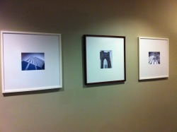 Photography in Print These photos adorn the Sabey International Headquarters. Photography:  Jesse Orrico Design: Brandon Hiraoka Interior Design: Kara Anderson