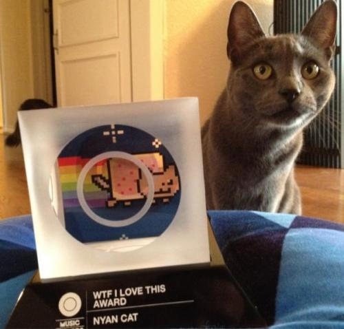 Marty, AKA the REAL Nyan Cat, graciously accepting his MTVO Music Award!http:// blog.omusicawards.com/2011/10/nyan-cat-wins/https://twitter.com/#!/PRguitarman/status/175358061119160320