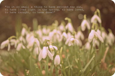 365 Grateful Project (by fionajonesphotography)